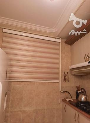 فروش آپارتمان 80 متر در تالش در گروه خرید و فروش املاک در گیلان در شیپور-عکس2