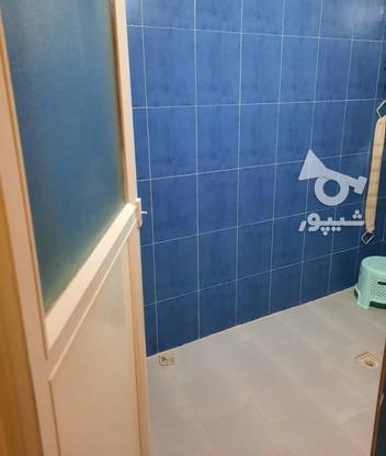 فروش آپارتمان 80 متر در تالش در گروه خرید و فروش املاک در گیلان در شیپور-عکس12