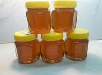 عسل طبیعی              . در شیپور-عکس کوچک