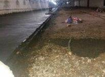 بتن ریزی کف  در شیپور-عکس کوچک