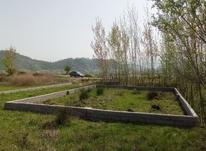 125متری/کوهبنه/لاهیجان/زمین در شیپور-عکس کوچک