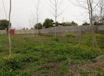 فروش زمین قابلیت ساخت در شیپور-عکس کوچک