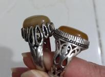 دو عدد انگشتر سنگین وزن و کلکسیونی در شیپور-عکس کوچک