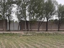 زمین 1900متر شهریار در شیپور