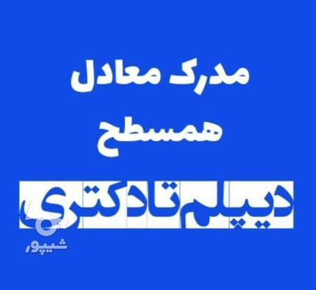 مدرک همسطح دیپلم تا دکتری/اعطای نمایندگی در گروه خرید و فروش خدمات و کسب و کار در تهران در شیپور-عکس2
