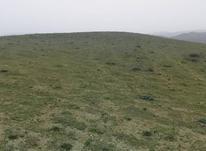 1000 متر زمین شهری در  منطقه توریستی و گردشگری دیلمان در شیپور-عکس کوچک