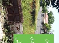 فروش زمین مسکونی 400 متر در چالوس در شیپور-عکس کوچک