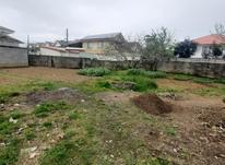 فروش زمین مسکونی 500 متر در صومعه سرا در شیپور-عکس کوچک