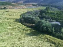 مجوزآب معدنی باچاه و زمین و وام در شیپور