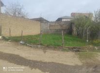 فروش زمین ویلایی مسکونی 170 متر در نکا جامخانه در شیپور-عکس کوچک