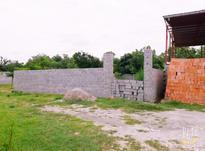زمین مسکونی 302 متری میانرود در شیپور-عکس کوچک