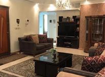 اجاره آپارتمان 120 متر در پونک یک در شیپور-عکس کوچک