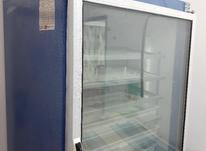 دستگاه جوجه کشی 1000 تایی در شیپور-عکس کوچک