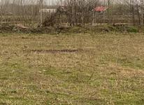 فروش زمین 23000 متر در رضوانشهر در شیپور-عکس کوچک
