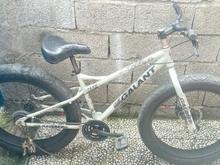 دوچرخه ساحلی فروش ویژه در شیپور
