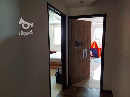 فروش آپارتمان 205 متر در سلمان فارسی در گروه خرید و فروش املاک در مازندران در شیپور-عکس3