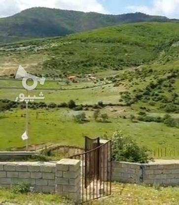 زمین 400 متری در کدیر مازندزان  در گروه خرید و فروش املاک در مازندران در شیپور-عکس4