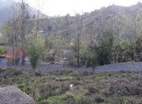 زمین مسکونی قلعه رودخان روی ارتفاع در شیپور-عکس کوچک