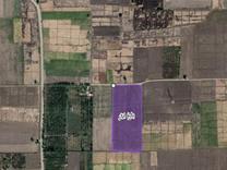 باغ انار +مجوز فنس و خانه باغ در شیپور