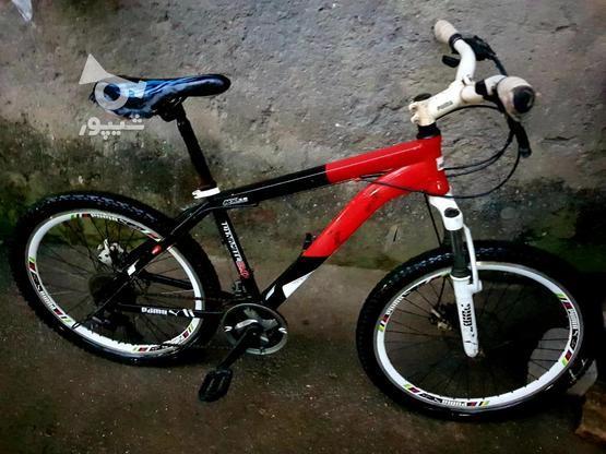 دوچرخه سالم،سایز24 در گروه خرید و فروش ورزش فرهنگ فراغت در مازندران در شیپور-عکس1