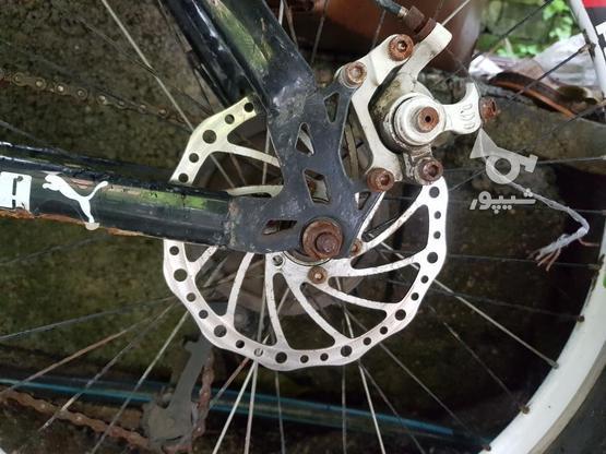 دوچرخه سالم،سایز24 در گروه خرید و فروش ورزش فرهنگ فراغت در مازندران در شیپور-عکس3