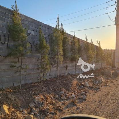 فروش زمین 300 متر در دماوند در گروه خرید و فروش املاک در تهران در شیپور-عکس3