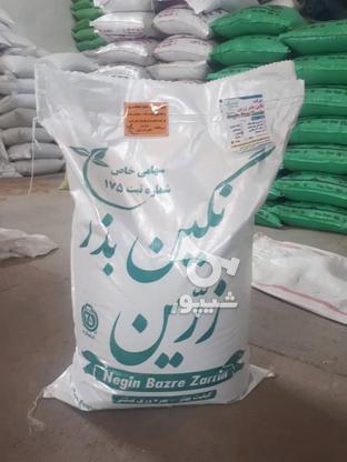 فروش یذر یونجه  در گروه خرید و فروش خدمات و کسب و کار در کرمان در شیپور-عکس1