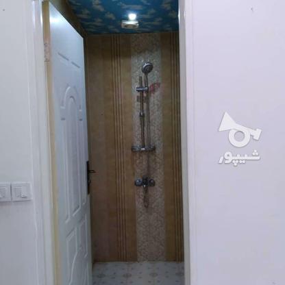 54 متر / استادمعین/فول امکانات/غرق در نور/دیدنی در گروه خرید و فروش املاک در تهران در شیپور-عکس2