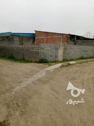 فروش زمین داخل بافت در گروه خرید و فروش املاک در مازندران در شیپور-عکس3