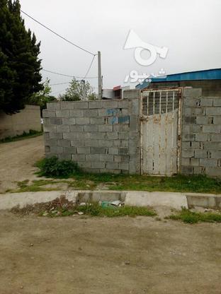 فروش زمین داخل بافت در گروه خرید و فروش املاک در مازندران در شیپور-عکس2