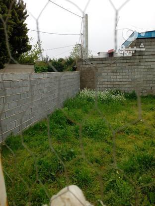 فروش زمین داخل بافت در گروه خرید و فروش املاک در مازندران در شیپور-عکس4