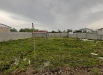 فروش زمین مسکونی 500 متر در رضوانشهر در شیپور-عکس کوچک