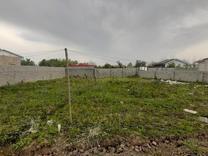 فروش زمین مسکونی 500 متر در رضوانشهر در شیپور
