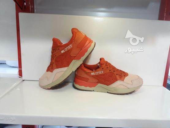 کفش کتونی پیاده روی اورجینالasics Gel در گروه خرید و فروش خدمات و کسب و کار در خراسان رضوی در شیپور-عکس5