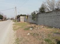 فروش زمین مسکونی 480 متر در قائم شهر در شیپور-عکس کوچک