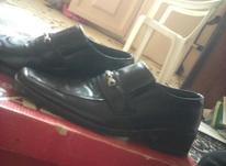 کفش پسرانه سایز35 در شیپور-عکس کوچک