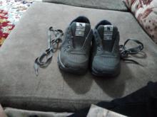 سایز 36 کفش شیما  در شیپور