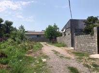 فروش زمین مسکونی 320 متر در یخسازی در شیپور-عکس کوچک