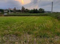 فروش زمین کشاورزی 600 متری در جاده نظامی در شیپور-عکس کوچک