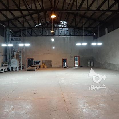 فروش شرکت خوراک دام وطیور) 15228میاندرود در گروه خرید و فروش املاک در مازندران در شیپور-عکس16