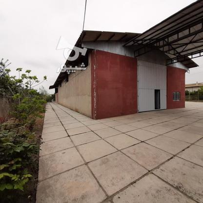 فروش شرکت خوراک دام وطیور) 15228میاندرود در گروه خرید و فروش املاک در مازندران در شیپور-عکس17