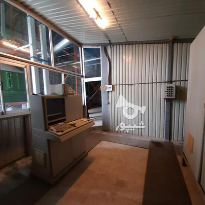 فروش شرکت خوراک دام وطیور) 15228میاندرود در گروه خرید و فروش املاک در مازندران در شیپور-عکس15
