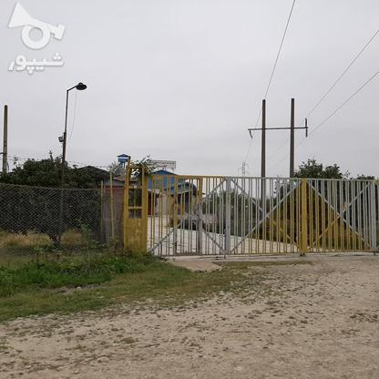 فروش شرکت خوراک دام وطیور) 15228میاندرود در گروه خرید و فروش املاک در مازندران در شیپور-عکس3