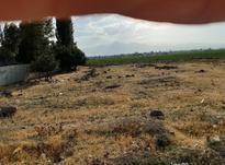 زمین بر جاده اردبیل مشگین یک کیلومتری اردبیل در شیپور-عکس کوچک