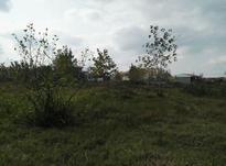 زمین مسکونی دارای سند و پروانه در چمخاله در شیپور-عکس کوچک