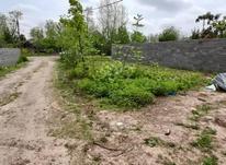 فروش زمین مسکونی 250 متر در کوچصفهان در شیپور-عکس کوچک