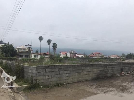 زمین داخل بافت مسکونی 600 متر در چالوس در گروه خرید و فروش املاک در مازندران در شیپور-عکس1