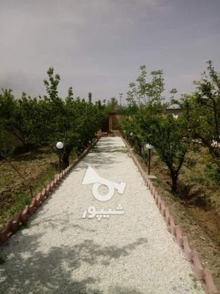 فروش باغ ویلا مسکونی 700 متر در شهریار در گروه خرید و فروش املاک در تهران در شیپور-عکس2