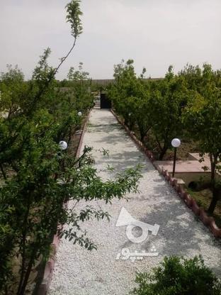 فروش باغ ویلا مسکونی 700 متر در شهریار در گروه خرید و فروش املاک در تهران در شیپور-عکس5