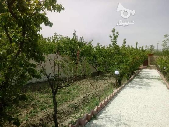 فروش باغ ویلا مسکونی 700 متر در شهریار در گروه خرید و فروش املاک در تهران در شیپور-عکس1